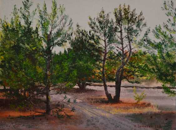 "Ivan Ormanzhi. Original landscape painting oil on canvas: ""The path between the small pines"" - photo 1"
