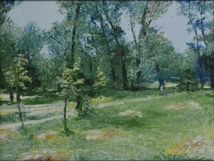 Ivan Ormanzhi. Original landscape painting oil on canvas, Hayfield in the park - photo 1