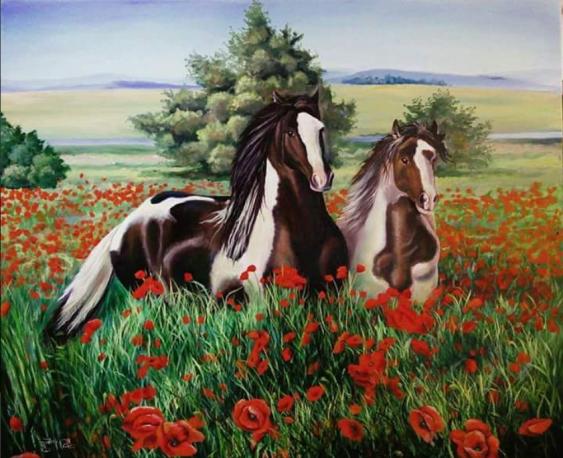 Tanya Radyk. Horse on a poppy field - photo 1