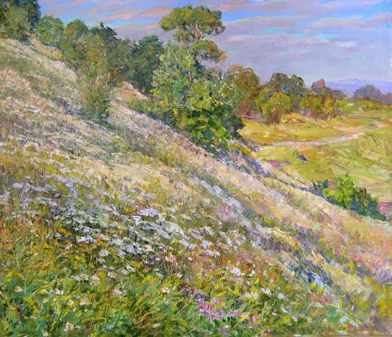 Aleksandr Dubrovskyy. Flowers on the slopes - Flowers on the slopes - photo 1
