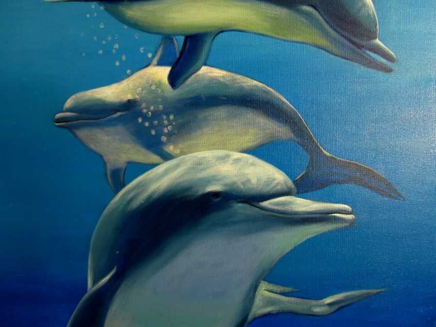 Sergiy Roy. Why are dolphins so mysteriously smiling ? - photo 3