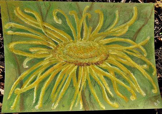 Victoria Buchina. Yellow flower - photo 1