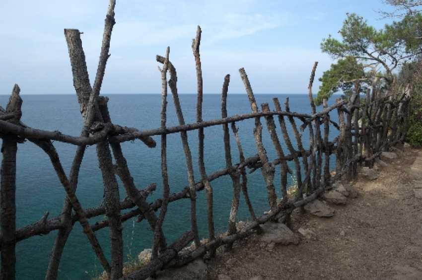 Svetlana Shimkovich. Fenced sea - photo 1