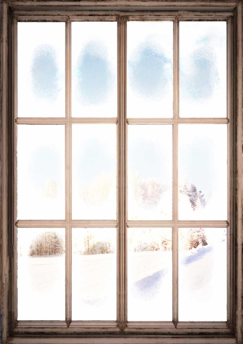 Anastasiia Djoconda. Winter window - photo 1
