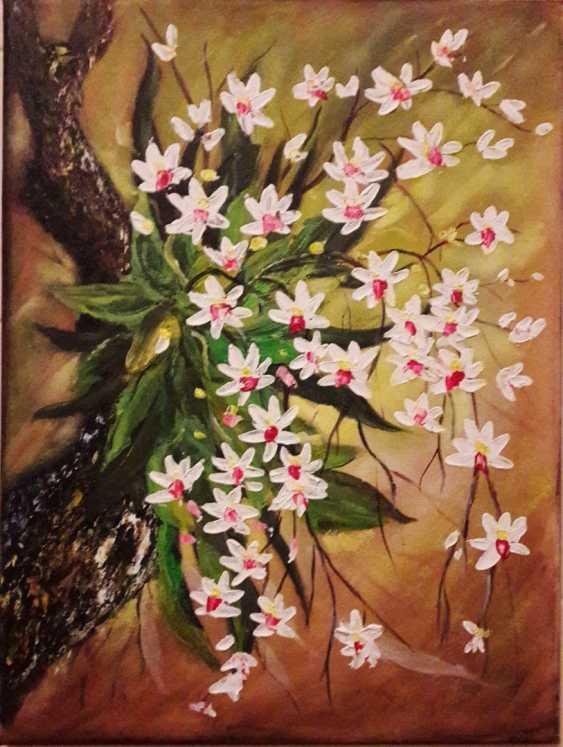 Svitlana Antonova. Orchids - photo 1