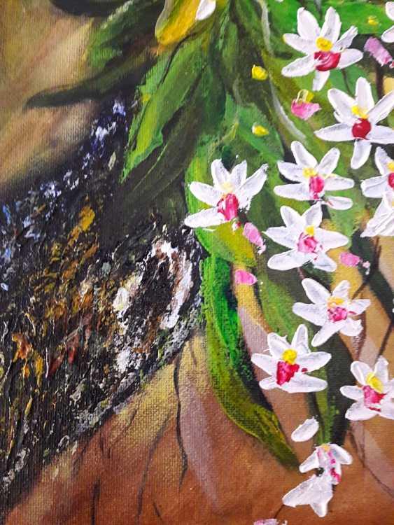 Svitlana Antonova. Orchids - photo 3
