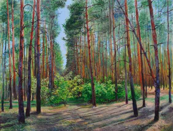 Ivan Ormanzhi. Glade in a pine forest - photo 1