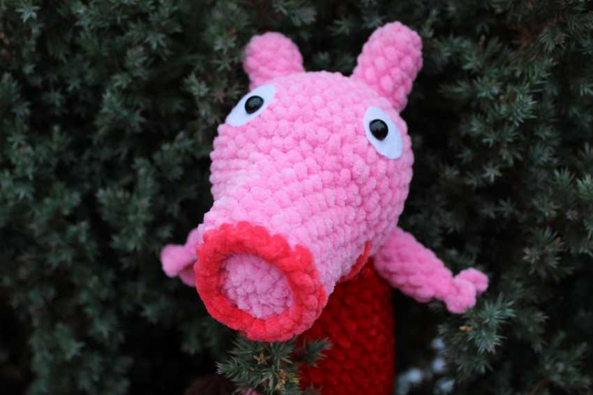 Tanya Derksch. Peppa pig - photo 3