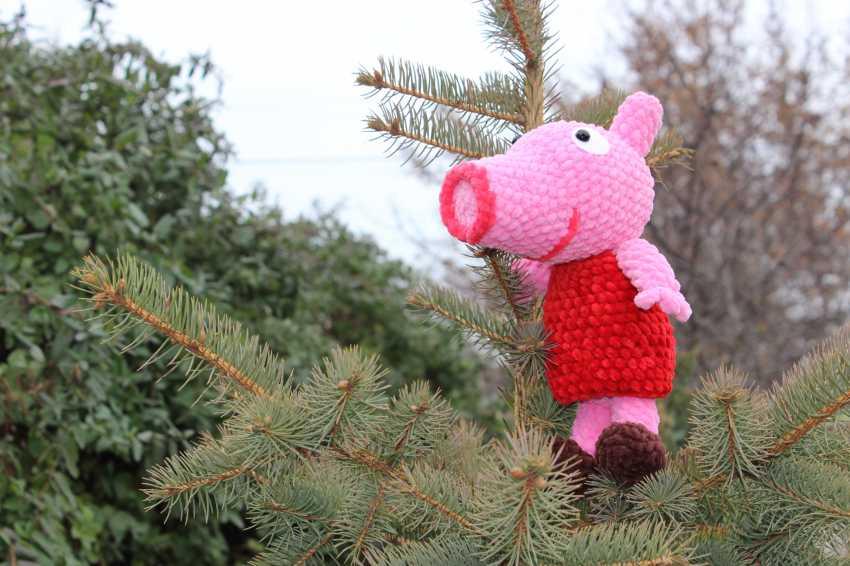 Tanya Derksch. Peppa pig - photo 6