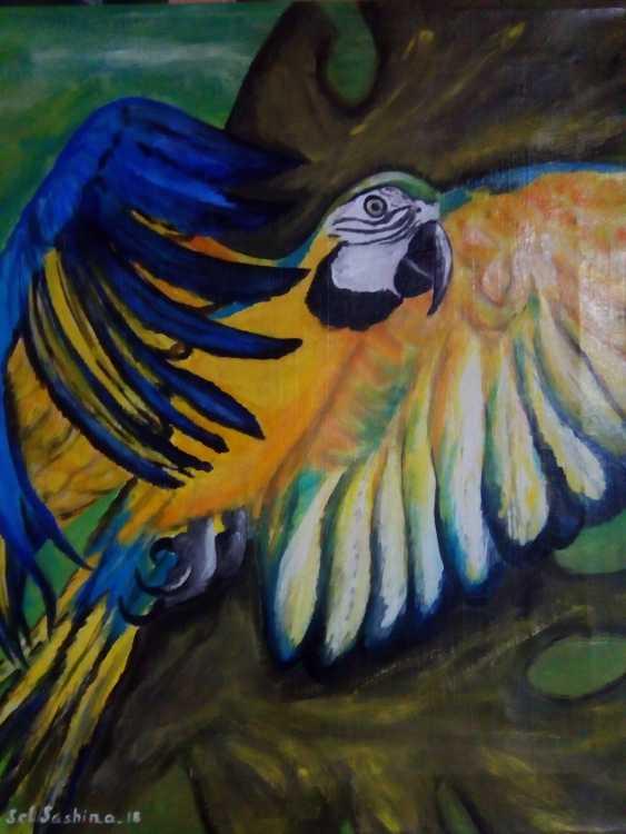 "Elena Podust. ""Tropical parrot"" - photo 1"