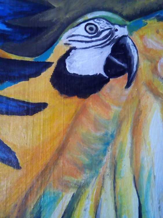 "Elena Podust. ""Tropical parrot"" - photo 2"