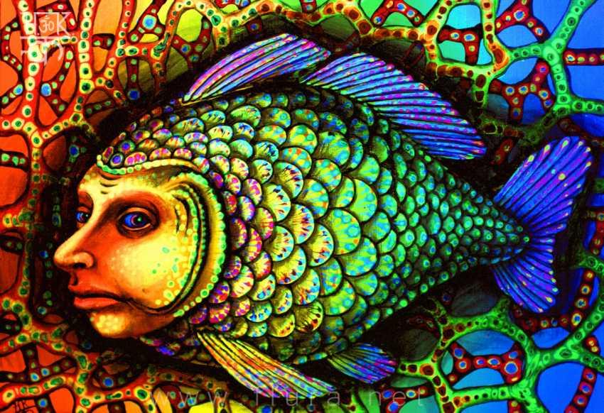 Serhii Rushavytsin. FISH - photo 1