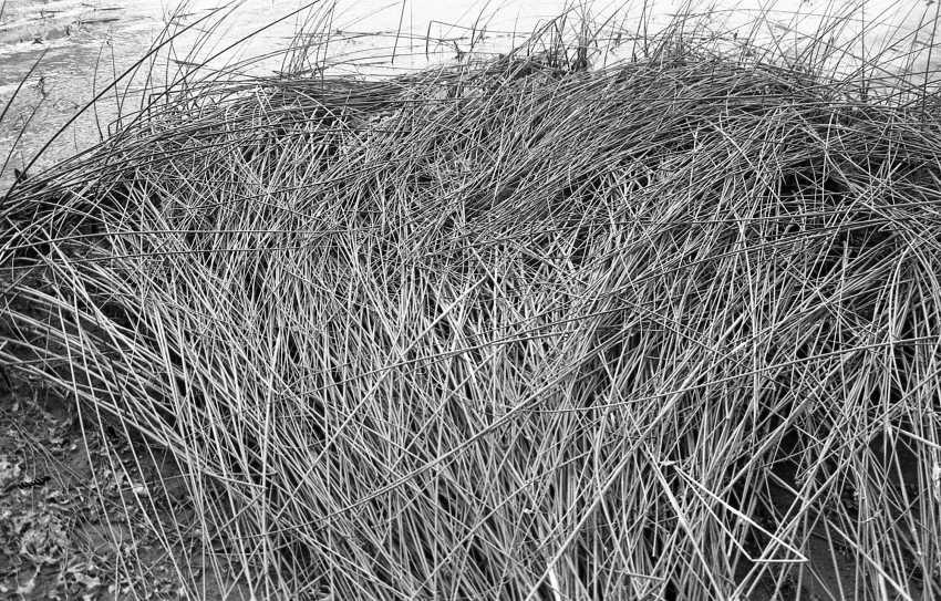 Alexey Semerikov. Solid weave - photo 1