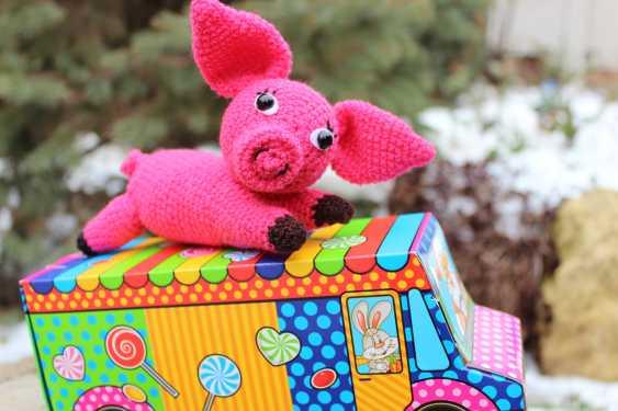 Tanya Derksch. Pig - photo 5