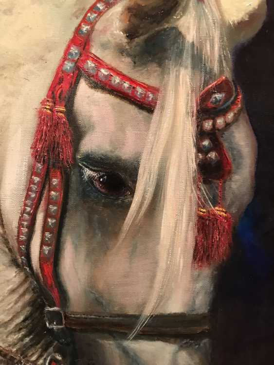 Marina Andreichenko. Arabian horse - photo 2