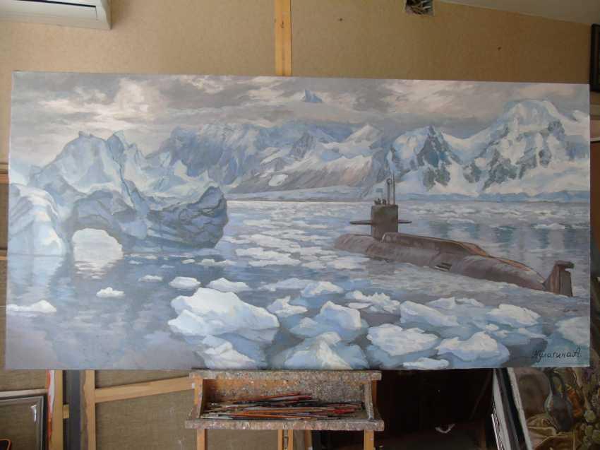 Anna Kulagina. New Arctic - photo 1