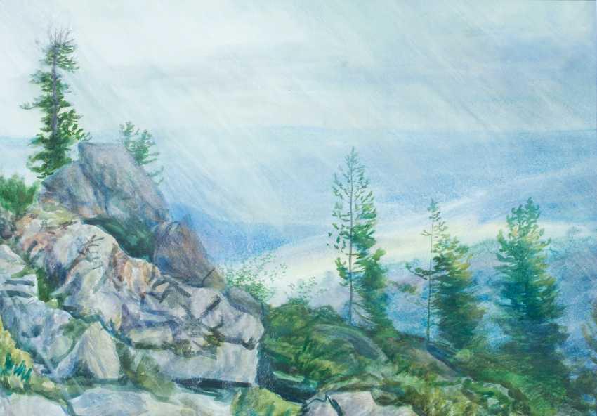 Viktor Borodin. Rain in Sayan - photo 1