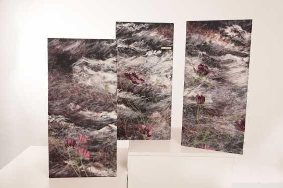 "Nelli Pashtenko. Triptych ""the CONTRASTS of NATURE"" - photo 1"
