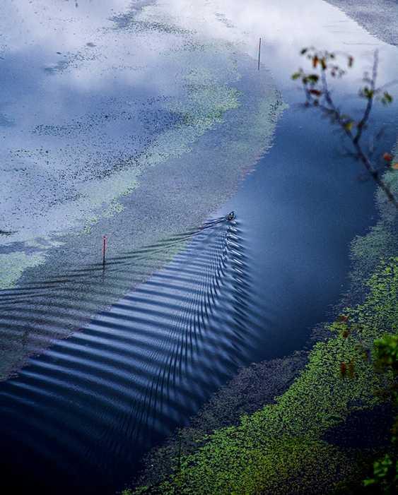 Vladimir Verkhovskiy. Blue landscape - photo 1