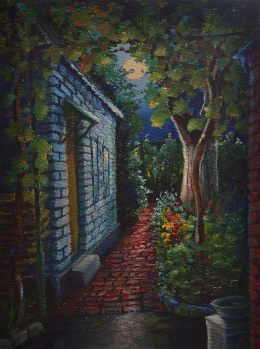 Evgeny Anisimov. Moonlight Path - photo 1