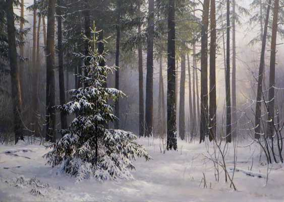 Evgeny Stain. In the winter forest - photo 1