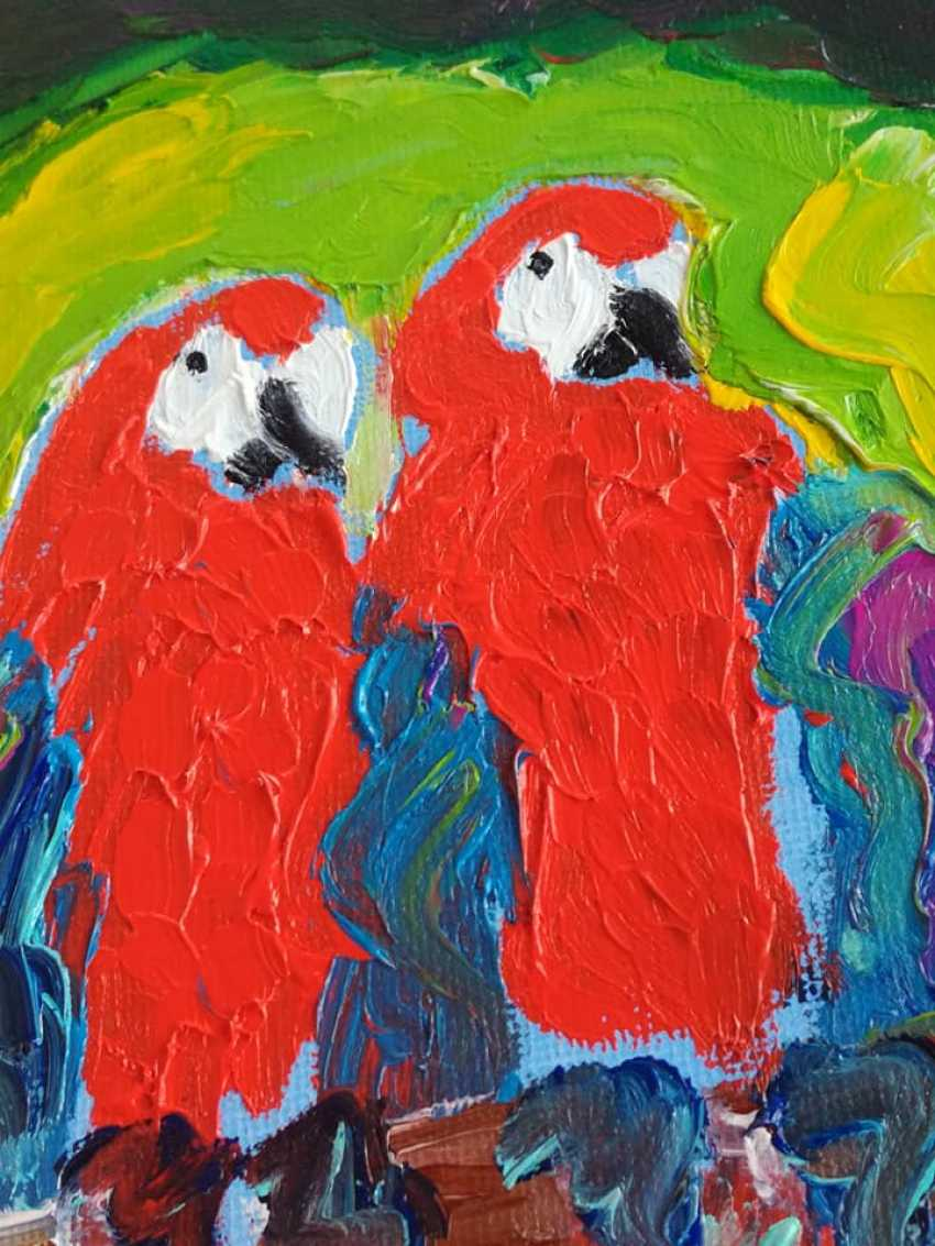 Roni Goldfinger. Parrots Original oil painting Finger painting 2019 Home wall decor Canvas Art. New. Without frame. 24x18cm - photo 2