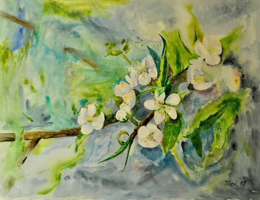 Maryna Pashchenko. Flowering Apple trees. - photo 1