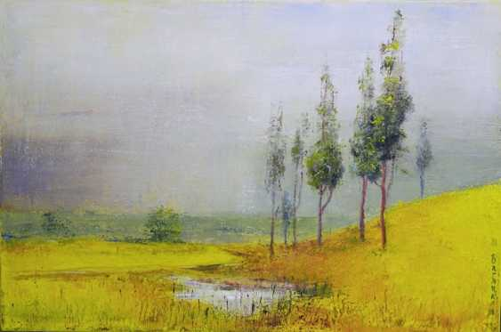 Nataliia Bahatska. After the Rain - photo 1