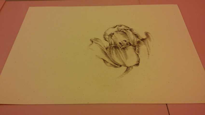 Gohar Tumasyan. Tulip flower - photo 2