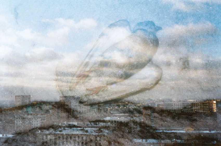 Georgy Pervov. Totalrealism - photo 4