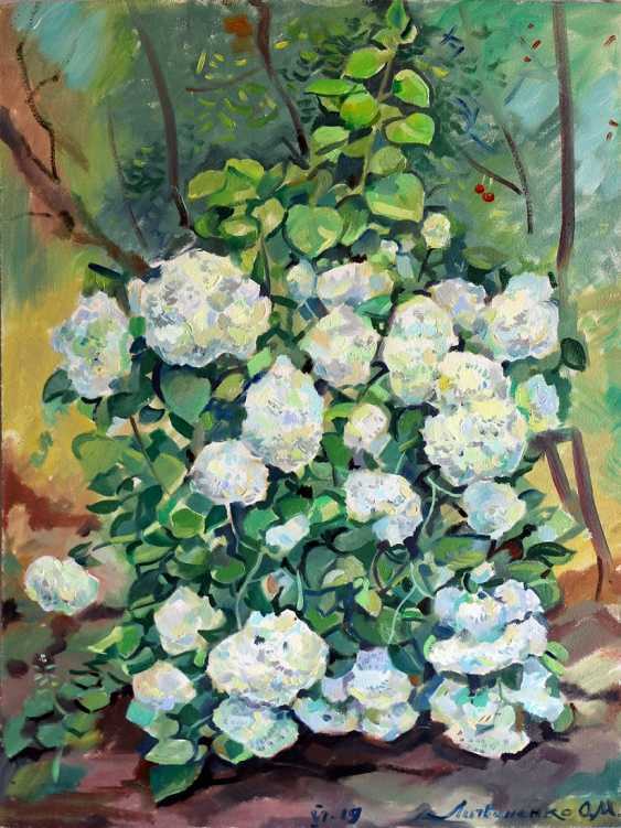 Oleg Lytvynenko. The hydrangea. - photo 1
