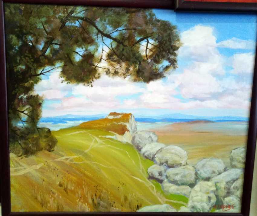 Анатолий Мороз. Salt estuary. Soloniy lyman - фото 1