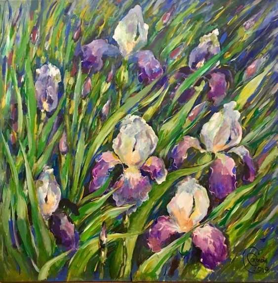 Sveta Sokolova. Irises - photo 1