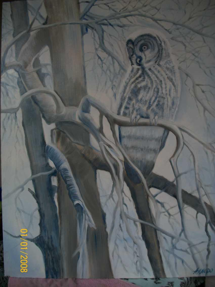 """Alla \almoro\ Morozova. """"OWL IN WINTER"""" - photo 1"""