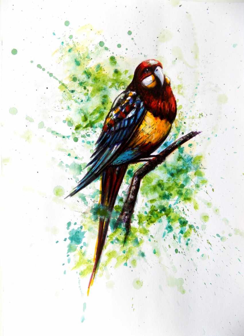 Alex Neint. MOTLEY BIRD - photo 1