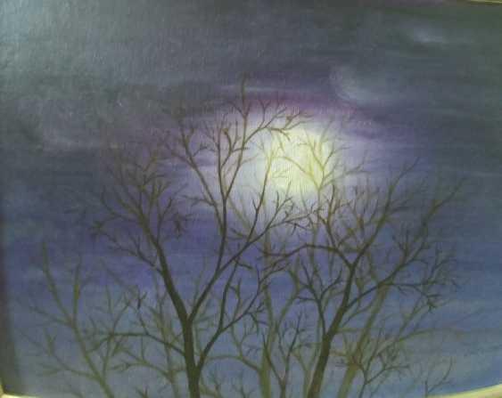 Diana Nagornaja. Moonlit night - photo 1
