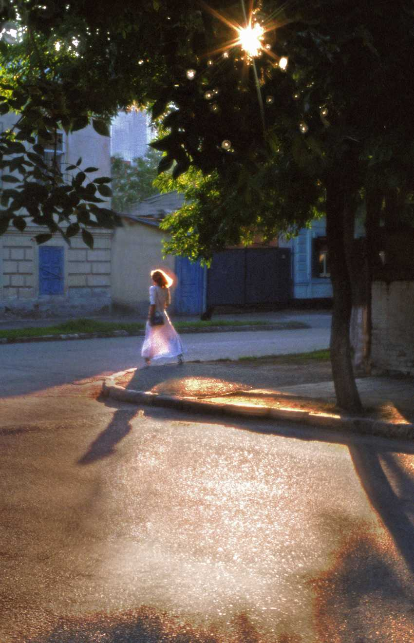 Andrey Petrosyan. Summer Dream - photo 1