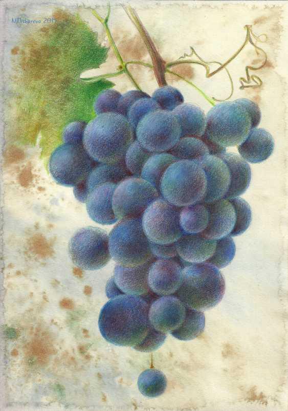 Natasha Mishareva. A bunch of grapes - photo 1