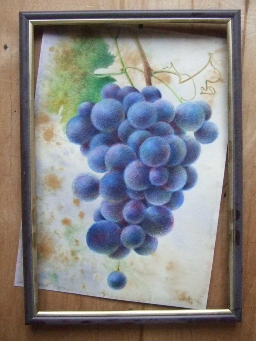 Natasha Mishareva. A bunch of grapes - photo 2
