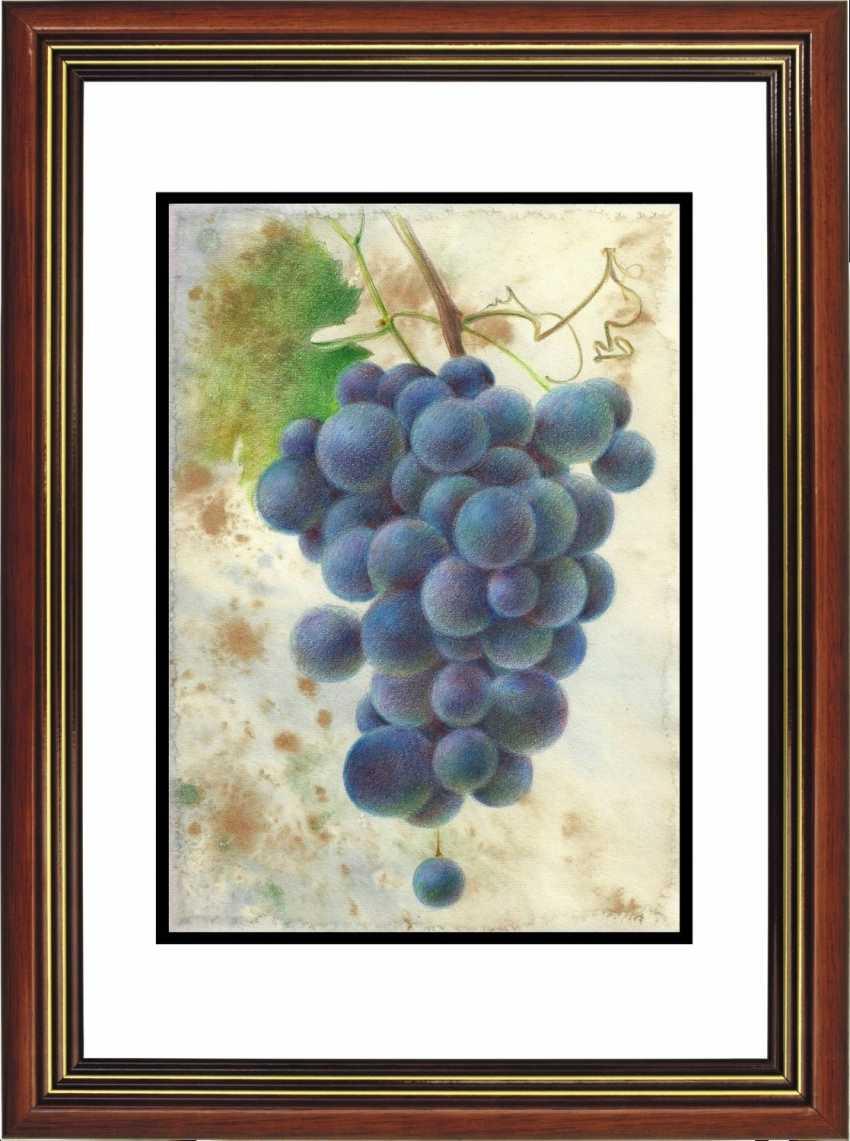 Natasha Mishareva. A bunch of grapes - photo 3