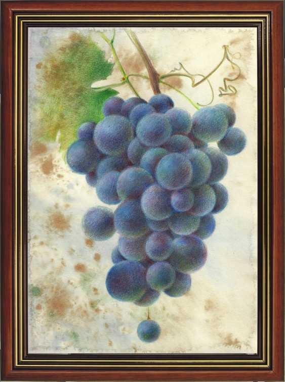 Natasha Mishareva. A bunch of grapes - photo 4