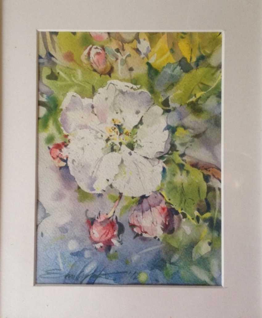 Zoia Emelyanenko. Apple blossom - photo 1