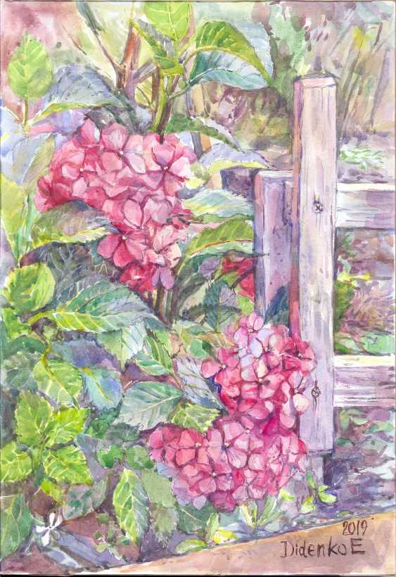 Elena Didenko. The hydrangea. - photo 1