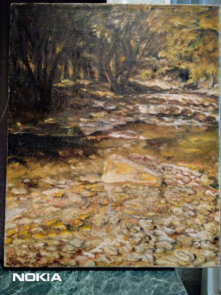 Yanina Mir. Mountain river - photo 1