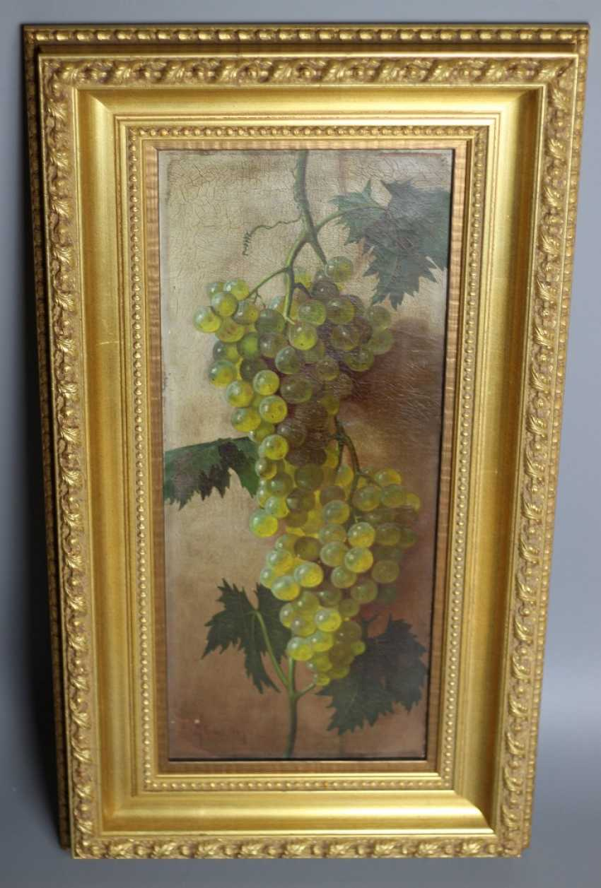 """The painting """"the vine"""" - photo 1"""