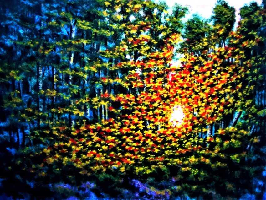 Alex Neint. The fire of sunset - photo 1