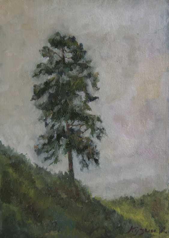 IVAN KUZIN. Pine slope / Slope pine - photo 1