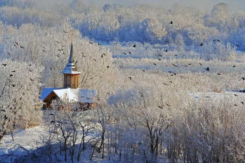 Andrey Petrosyan. The winter flight - photo 1