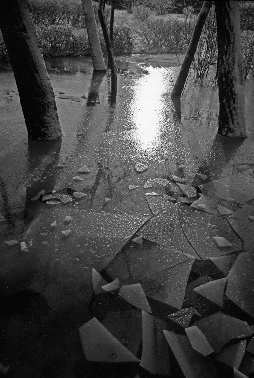 Andrey Petrosyan. Winter Sun - photo 1