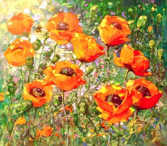 Andrey Mishagin. Red poppies - photo 1